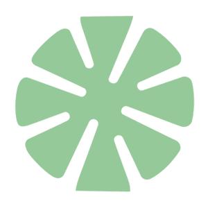 Green Supreme 3 inch Polishing Pad