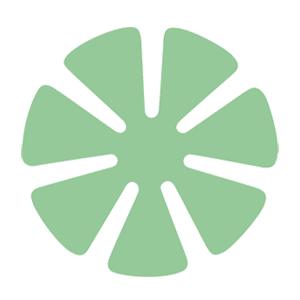 Green Supreme 80mm Polishing Pad