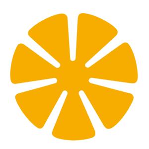Yellow Supreme 76mm 7 Petal Polishing Pad
